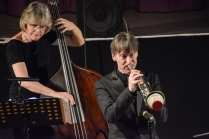 Paul Higgs and Marianne Windham performing at Fleet Jazz Club on 20th February 2018. Photograph courtesy of David Fisher from the Aldershot, Farnham & Fleet Camera Club