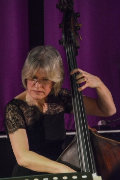 Marianne Windham performing at Fleet Jazz Club on 20th March 2018. Photograph courtesy of David Fisher from the Aldershot, Farnham & Fleet Camera Club