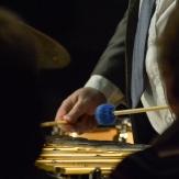 Nat Steele performing at Fleet Jazz Club on 17th April 2018. Photograph courtesy of David Fisher from the Aldershot, Farnham & Fleet Camera Club.
