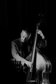 Arnie Somogyi performing with Brandon Allen at Fleet Jazz Club on 18th June 2019. Photograph courtesy of Michael Bacon (Aldershot, Farnham and Fleet Camera Club)